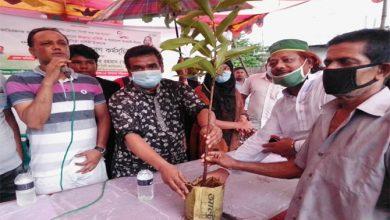 Photo of ঢাকা -৫ এর প্রার্থী জননেতা আতিকের অবিরাম গণসংযোগ